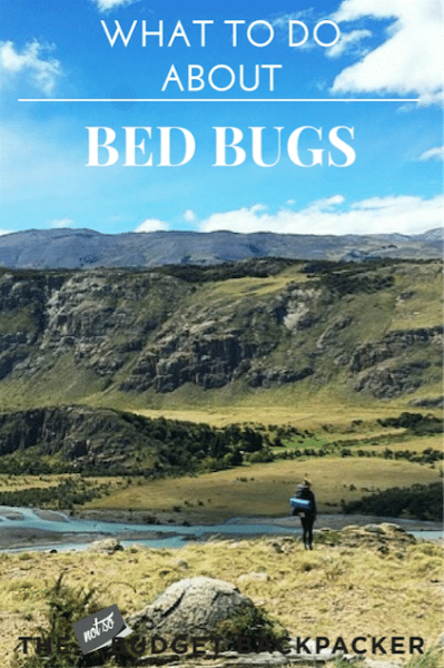 Bed bugs while traveling