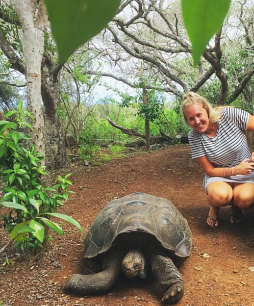 Things to do in San Cristobal Galapagos - Tortoise