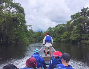 Amazon in Ecuador - view from boat