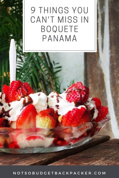 Things to do in Boquete Panama - pin