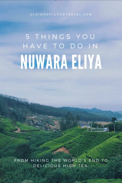 Things to do in Nuwara Eliya - pinterest