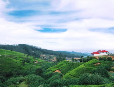 Five Fabulous Things to do in Nuwara Eliya