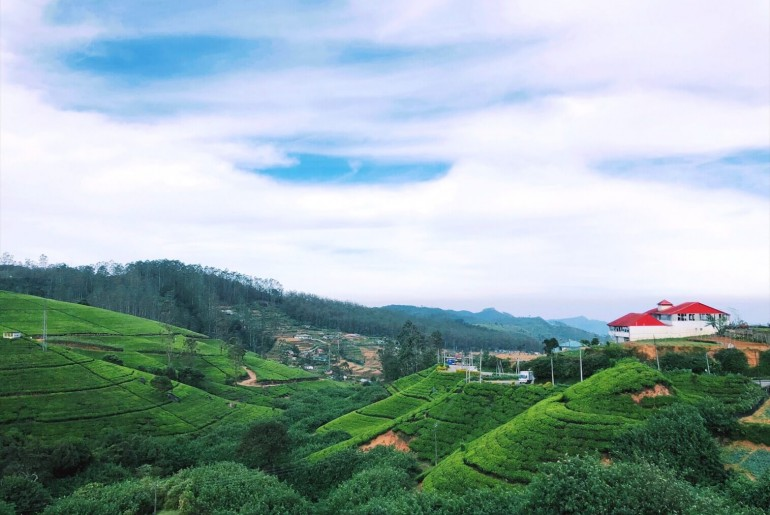 Things to do in Nuwara Eliya - Scrimpsplurgetravel